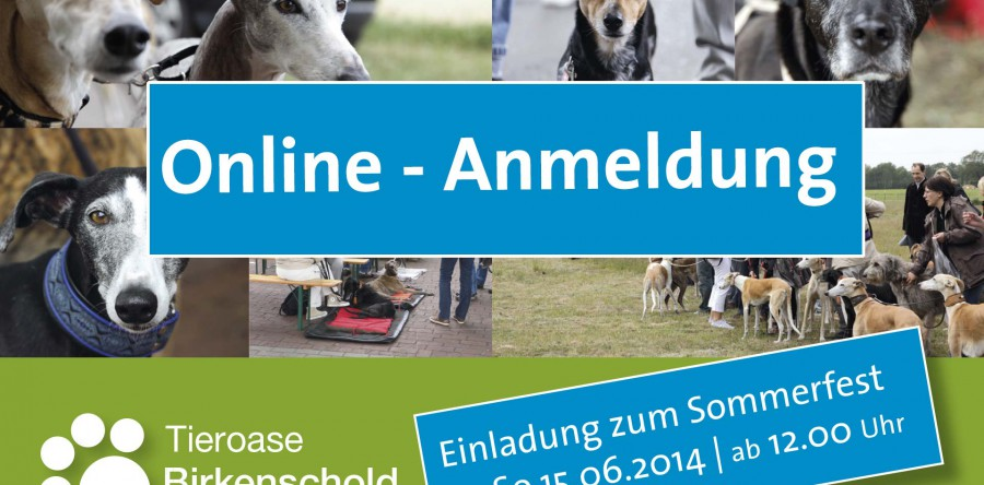Online – Anmeldung Sommerfest
